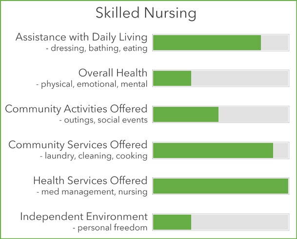 Skilled Nursing Statistics Chart
